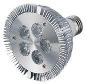 10W LED PAR30 Light