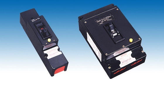 TGE40 Earth Leakage Circuit Breaker,ELCB